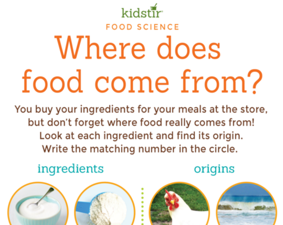 Where Does Food Come From Game for Kids