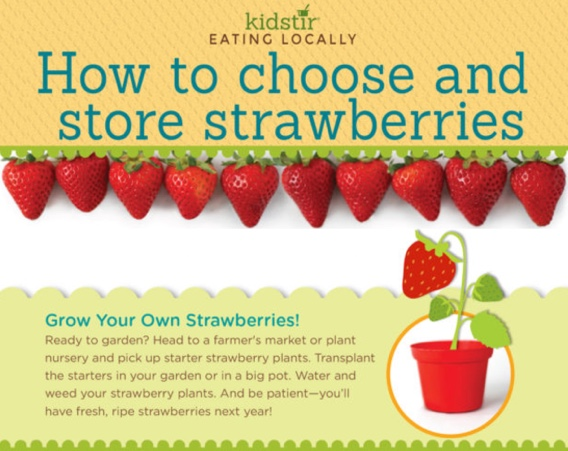 May strawberries infographic